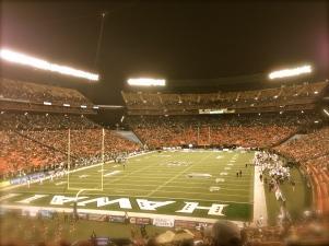 pretty field
